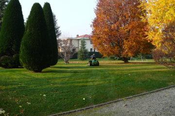 Realizzazione e manutenzione parchi e giardini